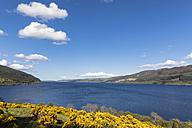 UK, Scotland, Loch Ness, Drumnadrochit - FOF09279