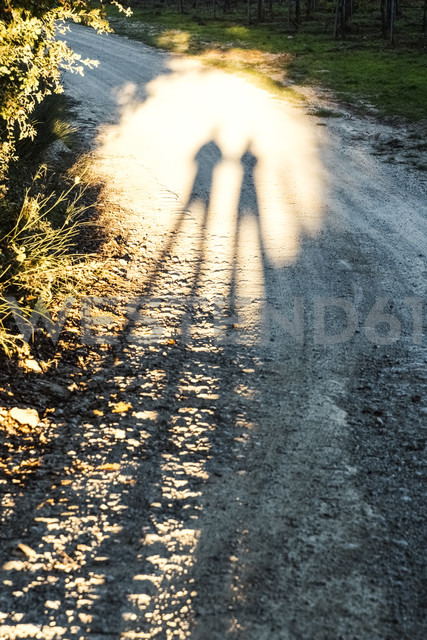 Italy, Tuscany, shadows of people on dirt track - CSTF01340