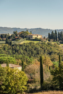 Italy, Tuscany, cultural landscape with pine trees and cypresses - CSTF01349