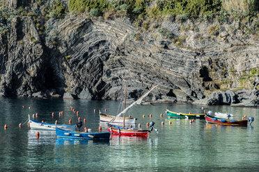 Italy, Liguria, Cinque Terre, bay of Vernazza - CSTF01389