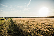 Girl walking with dog at grain field - MOEF00091