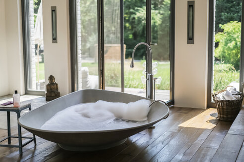 Interior of a luxurious bath room in a country house - RIBF00673
