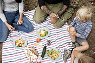 Family having a picnic in forest - MFRF00984