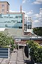 Germany, Duisburg, Urban rooftop garden - KNSF02764