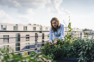 Businesswoman cultivating vegetables in his urban rooftop garden - KNSF02797