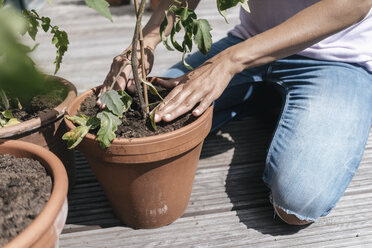 Woman caring for plants on balcony - JOSF01555
