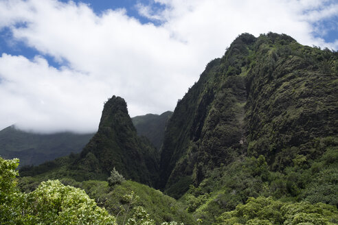 USA, Hawaii, Maui, Iao Valley State Park, The Needle - HLF01023