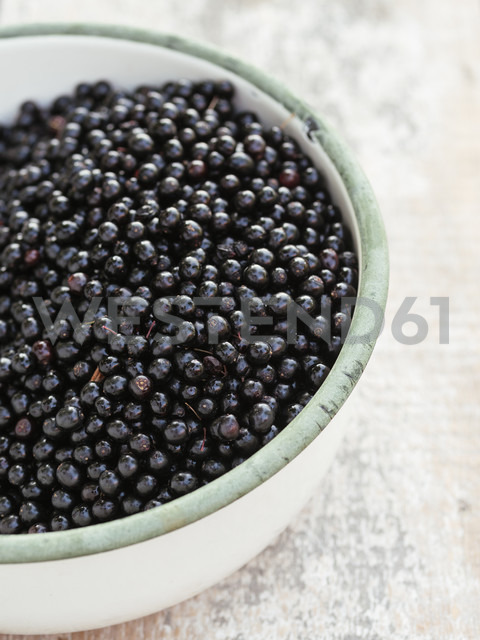 Bowl of elderberries - HAWF00974