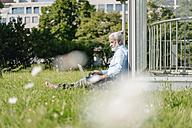 Mature man using laptop on meadow - JOSF01733