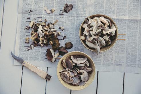 Two bowls of sliced wild mushrooms - MFF03954