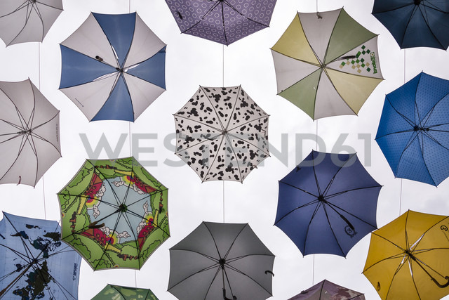 Selection of umbrellas - NG00419 - Nadine Ginzel/Westend61