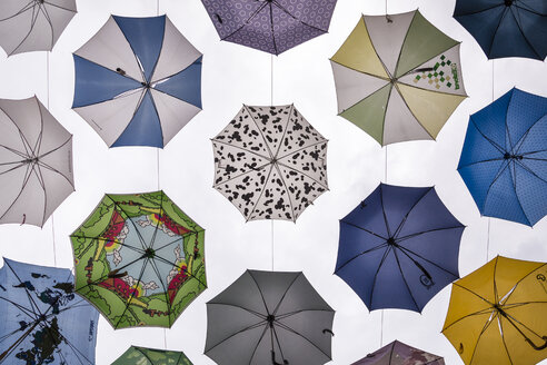 Selection of umbrellas - NG00419