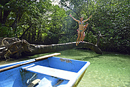 Dominican Republic, Samana, two women jumping into water in a mangrove lagoon - ECPF00116