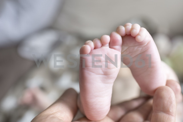 Feet of baby being held by mother's hand - CSTF01402