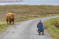 UK, Scotland, Inner Hebrides, Isle of Skye, tourist taking picture of Highland Cattle - FOF09387