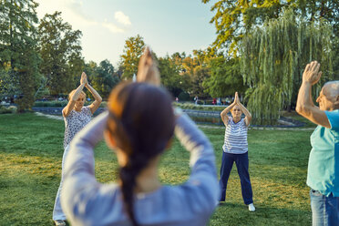 Group of people doing Tai chi in a park - ZEDF00891