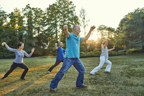 Group of people doing Tai chi in a park - ZEDF00894