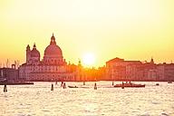 Italy, Venice, Silhouette of Santa Maria della Salute at sunset - MRF01724