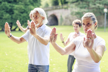 Group of seniors doing Tai chi in a park - PNPF00008