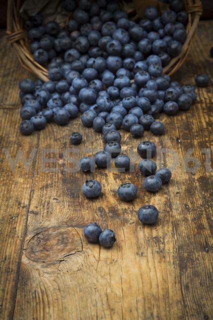 Blueberries on wood - LVF06279