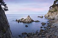 Spain, Catalonia, Lloret de Mar, Cala Trons - SKCF00320