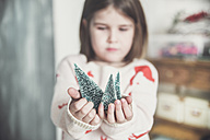Little girl with miniature Christmas tree, close-up - RTBF01029
