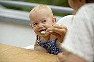 Mother feeding her baby girl - LBF01664