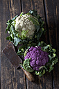 White and purple cauliflower and old cleaver on dark wood - CSF28295