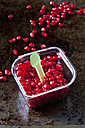 Pomegranate seed and plastic spoon in plastic box - CSF28337