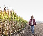 Farmer walking along cornfield - UUF11902