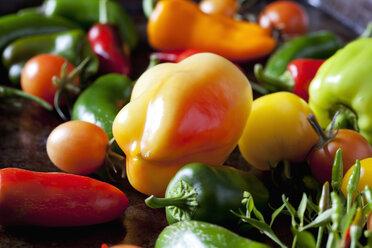 Various organic vegetables, close-up - CSF28346