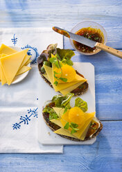 Sandwiches with sallow thorn chutney, cheese, lettuce leaves and orange slices - PPXF00077