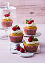 Raspberry cup cakes - PPXF00089