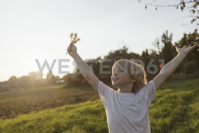 Carefree boy on the countryside in sunlight - KMKF00032