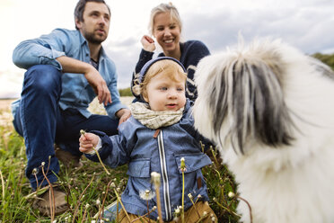 Cute little boy with parents and dog in dandelion field - HAPF02322