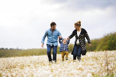 Parents walking with little boy in dandelion field - HAPF02325