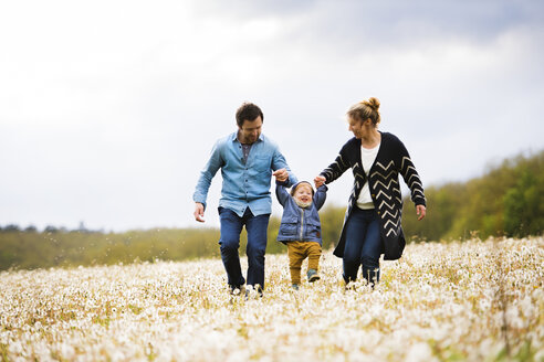 Parents walking with little boy in dandelion field - HAPF02325