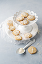Biscuits with sugar icing and coconut flakes - MYF01980