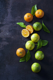 Organic tangerines and lemons on dark background - CSF28465