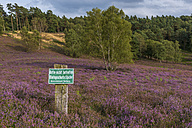 Germany, Hamburg, Fischbeker Heide Nature Preserve, sign biotope protection area - KEBF00644