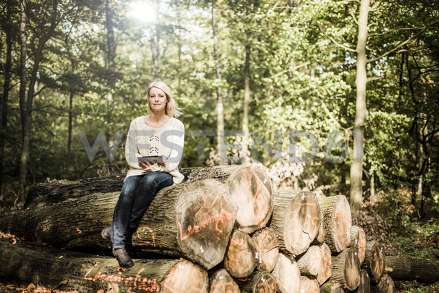 Portrait of woman sitting on stack of logs in the forest with tablet - MOEF00252 - Robijn Page/Westend61