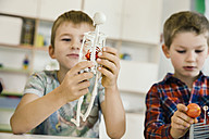 Boy holding anatomical model in kindergarten - MFF04123