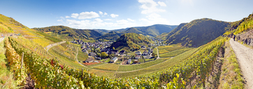 Germany, Rhineland-Palatinate, Ahr Valley, Maischoss, View from Red Wine Hiking Trail, panorama - FRF00598