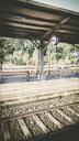 Rail station - CMF00727