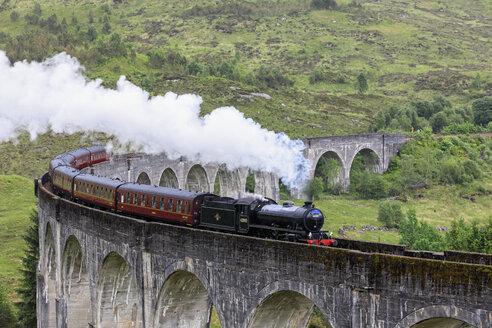 Great Britain, Scotland, Scottish Highlands, Glenfinnan, Glenfinnan Viaduct, West Highland Line, Steam engine The Jacobite - FO09409