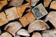 Firewood, close-up - JTF00857