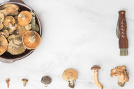 Different edible mushrooms, top view on marble - SKCF00327