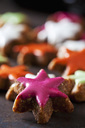 Home-baked coloured cinnamon stars - CSF28541