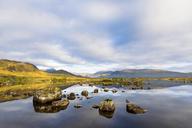 Great Britain, Scotland, Scottish Highlands, Glencoe, Rannoch Moor, Lochan na H'Achlaise - FOF09515