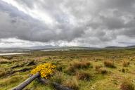 Great Britain, Scotland, Scottish Highlands, Glencoe, Rannoch Moor, Loch Beinn Chaorach and Loch Ba - FOF09518